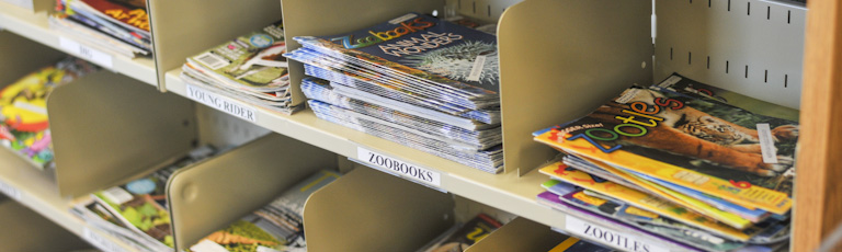 Children's magazines on a shelf